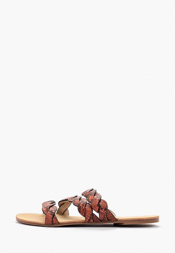 женское сабо dorothy perkins, оранжевое