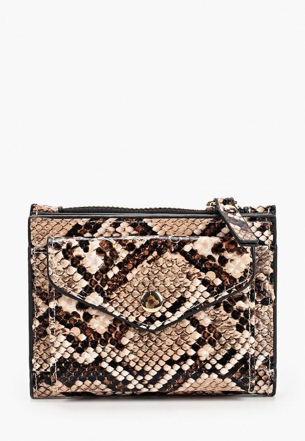 женский кошелёк dorothy perkins, коричневый