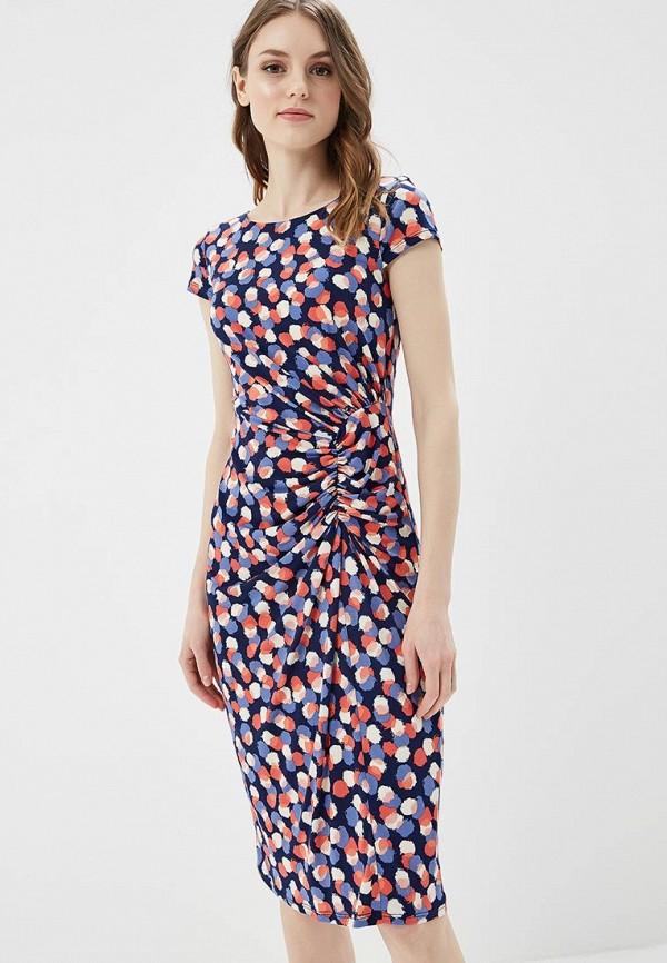 Купить Платье Dorothy Perkins, do005ewazvj8, разноцветный, Весна-лето 2018
