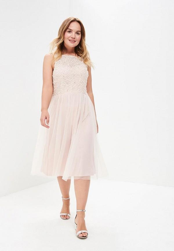 Купить Платье Dorothy Perkins, DO005EWBLXQ5, розовый, Весна-лето 2018