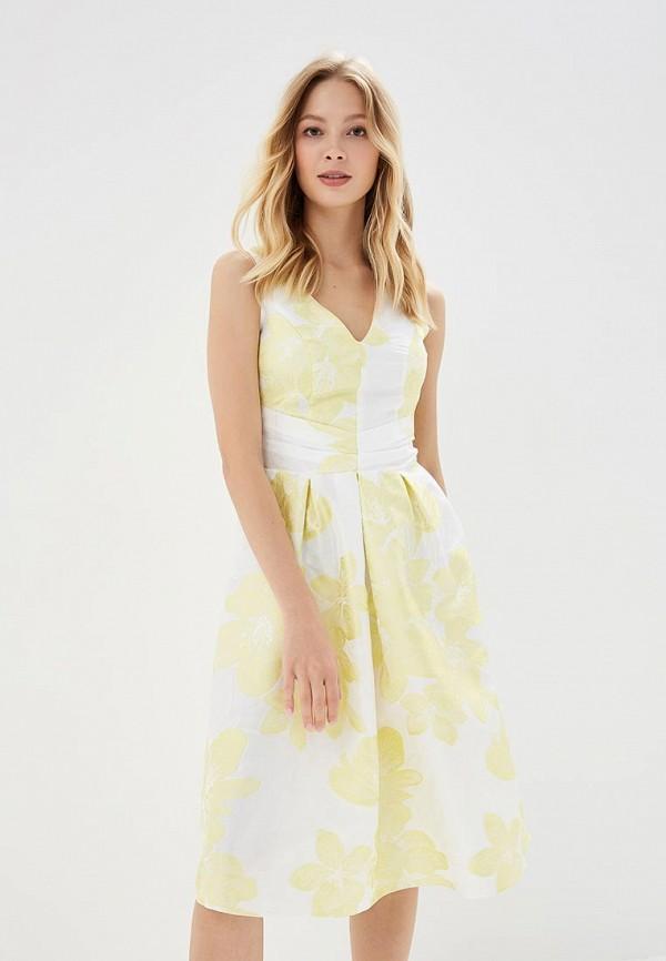 Платье Dorothy Perkins Dorothy Perkins DO005EWBTNZ6