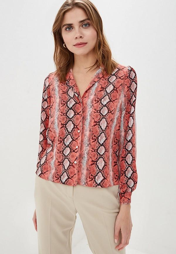 Блуза Dorothy Perkins Dorothy Perkins DO005EWFDUS5