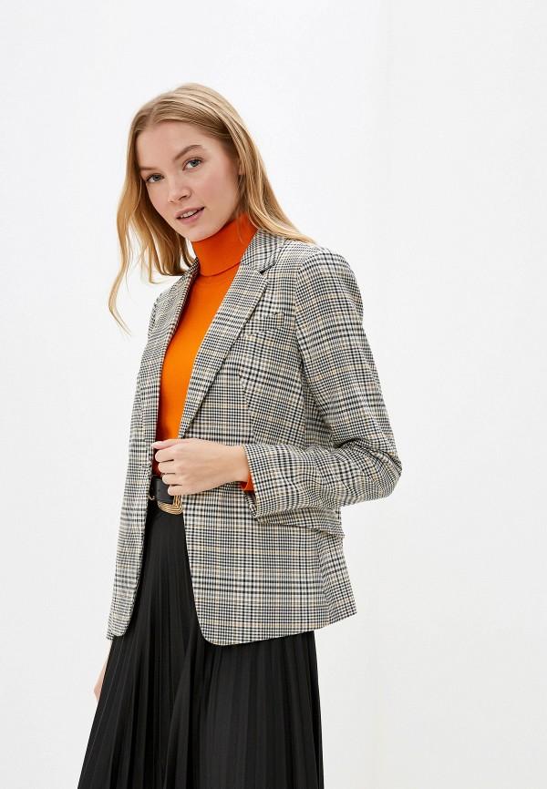 женский пиджак dorothy perkins, серый