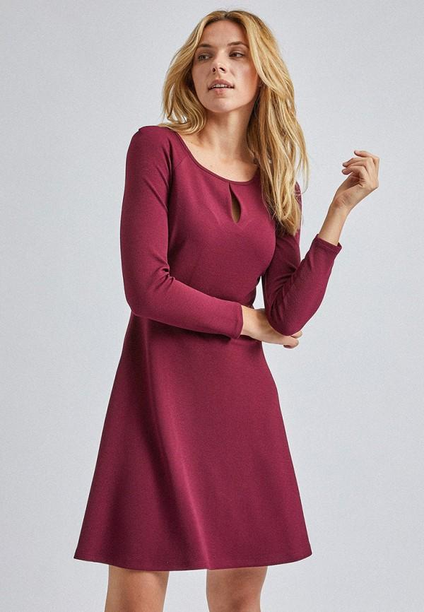 женское повседневные платье dorothy perkins, бордовое