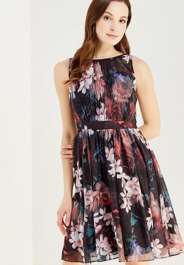Платье Dorothy Perkins Dorothy Perkins DO005EWYXN67