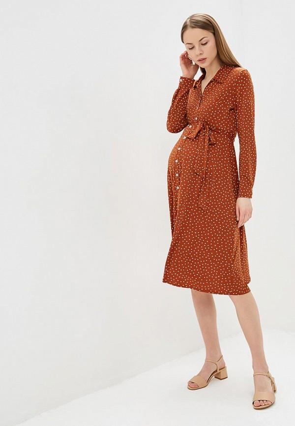 Платье Dorothy Perkins Maternity Dorothy Perkins Maternity DO028EWERXS3