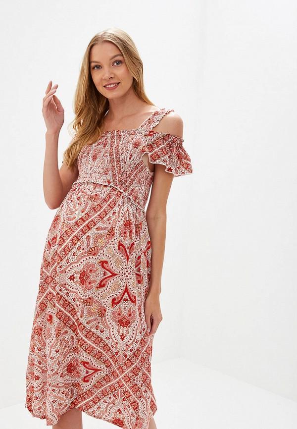 Платье Dorothy Perkins Maternity Dorothy Perkins Maternity DO028EWFJRE8