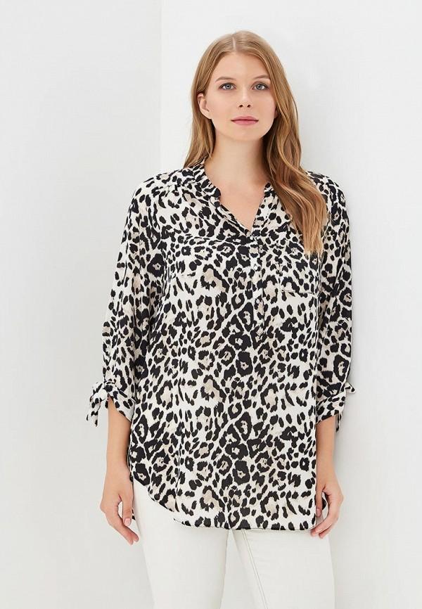 Блуза Dorothy Perkins Curve Dorothy Perkins Curve DO029EWCEPE7 блуза dorothy perkins curve dorothy perkins curve do029ewxbo49