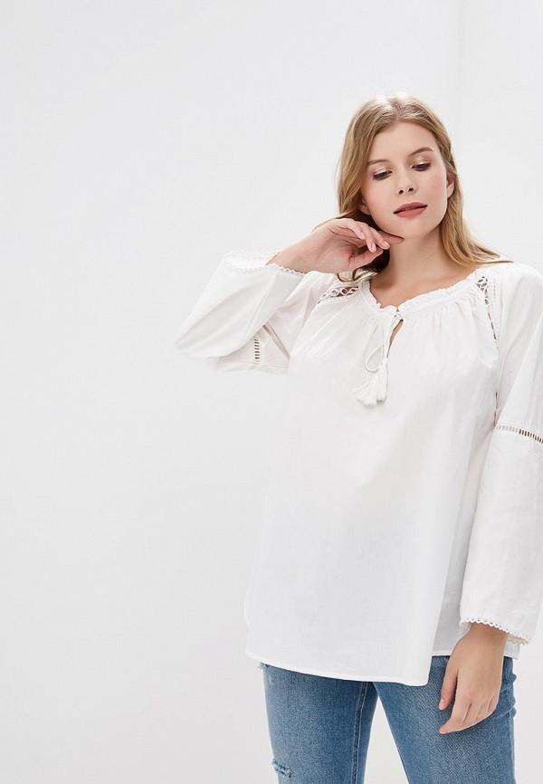 Блуза Dorothy Perkins Curve Dorothy Perkins Curve DO029EWCMQA6 блуза dorothy perkins curve dorothy perkins curve do029ewyxn31
