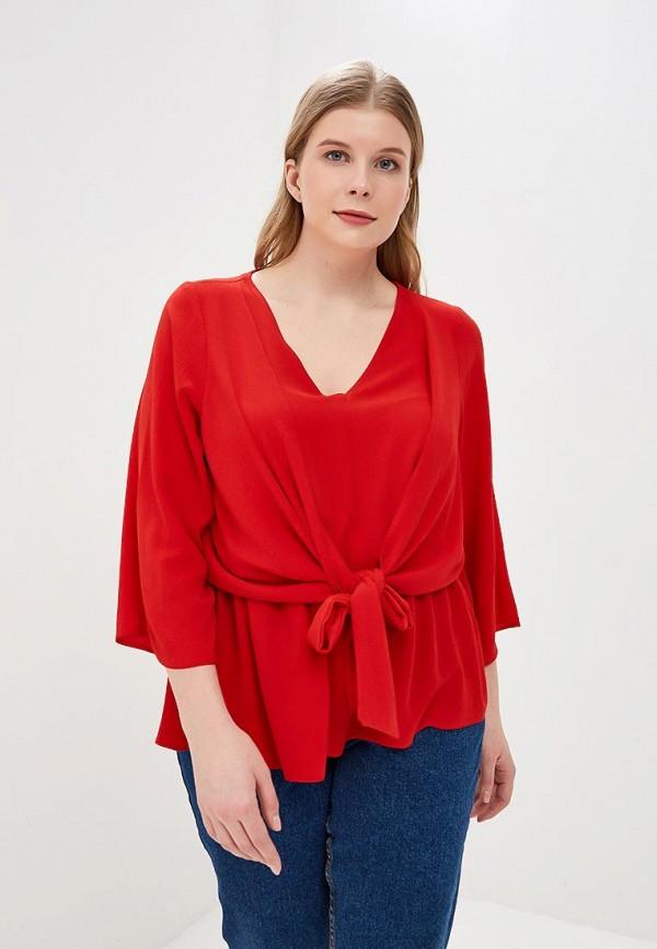 Блуза Dorothy Perkins Curve Dorothy Perkins Curve DO029EWEHRO8 цена