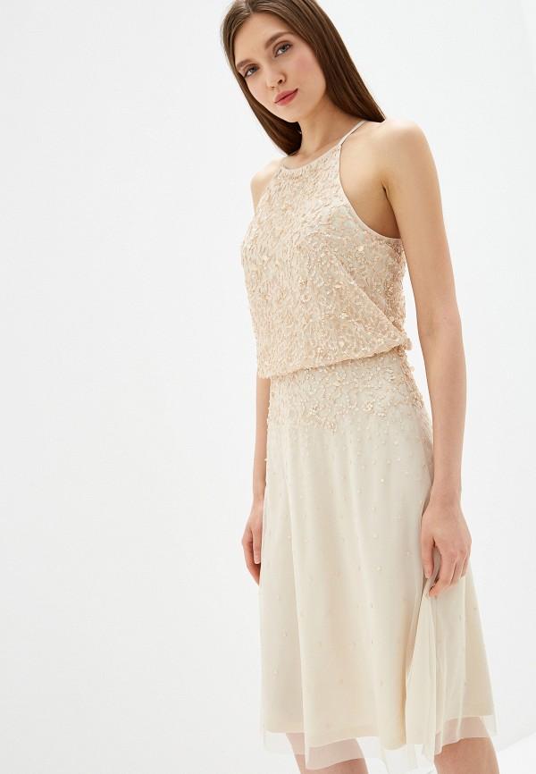 все цены на Платье Dorothy Perkins Curve Dorothy Perkins Curve DO029EWFQHW8