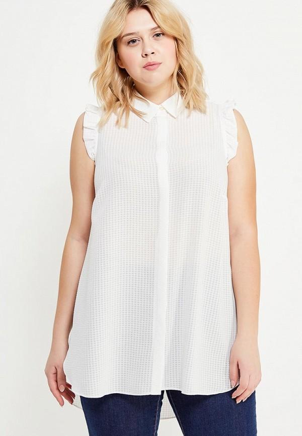 Блуза Dorothy Perkins Curve Dorothy Perkins Curve DO029EWUFT74