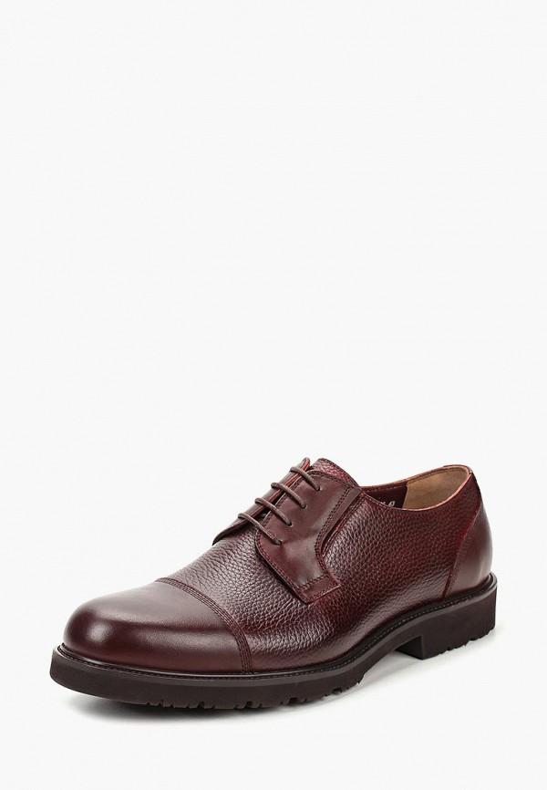 мужские туфли el'rosso, бордовые