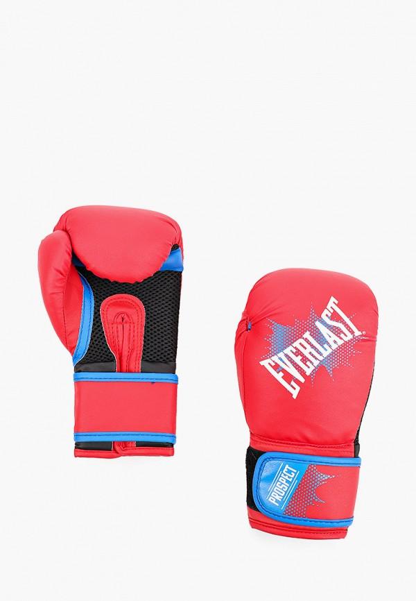 Перчатки боксерские Everlast Everlast EV001DKIMVO2