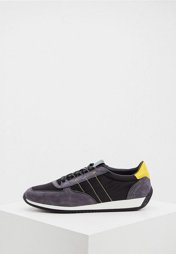 мужские кроссовки fabi, разноцветные