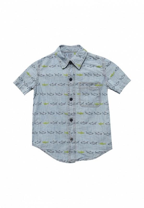 Купить Рубашка Gap, GA020EBAHOY8, голубой, Весна-лето 2018