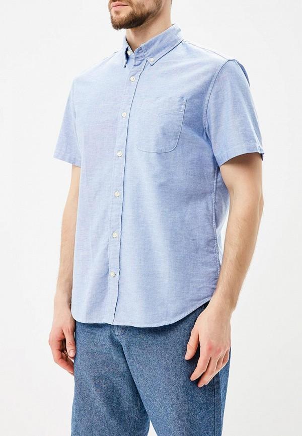 Купить Рубашка Gap, ga020emagwm1, голубой, Весна-лето 2018