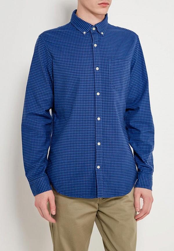 Купить Рубашка Gap, GA020EMWXT29, синий, Осень-зима 2018/2019