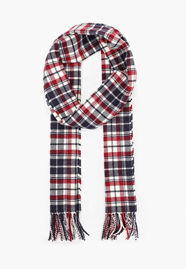 мужской шарф gant, разноцветный