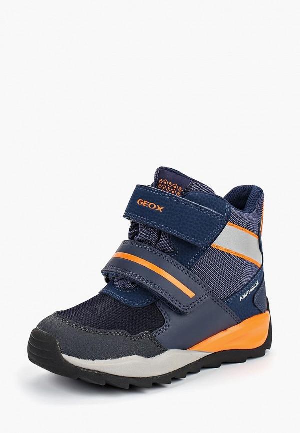 Купить Ботинки Geox, ge347abbydg2, синий, Осень-зима 2018/2019