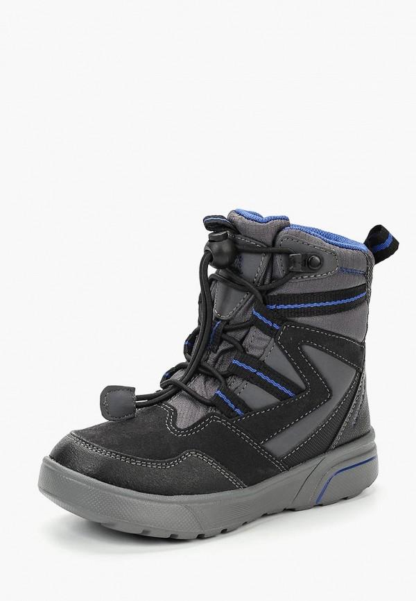Купить Ботинки Geox, ge347abbydk9, серый, Осень-зима 2018/2019