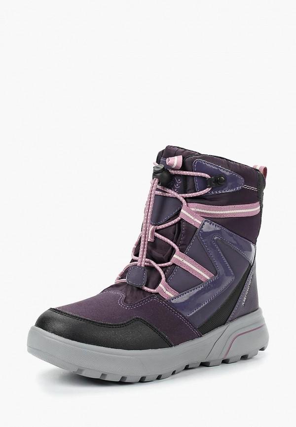 Купить Ботинки Geox, ge347agbydl5, фиолетовый, Осень-зима 2018/2019