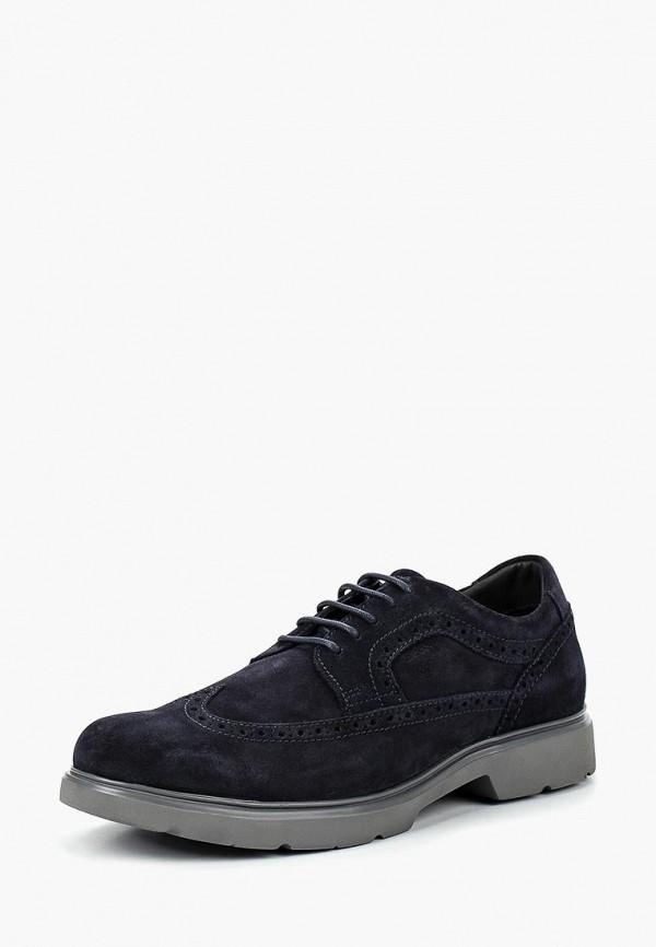 Купить Ботинки Geox, ge347amcbrb6, синий, Осень-зима 2018/2019