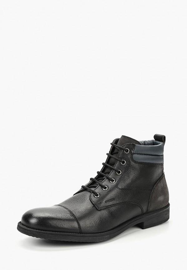 Купить Ботинки Geox, ge347amcbrd8, черный, Осень-зима 2018/2019