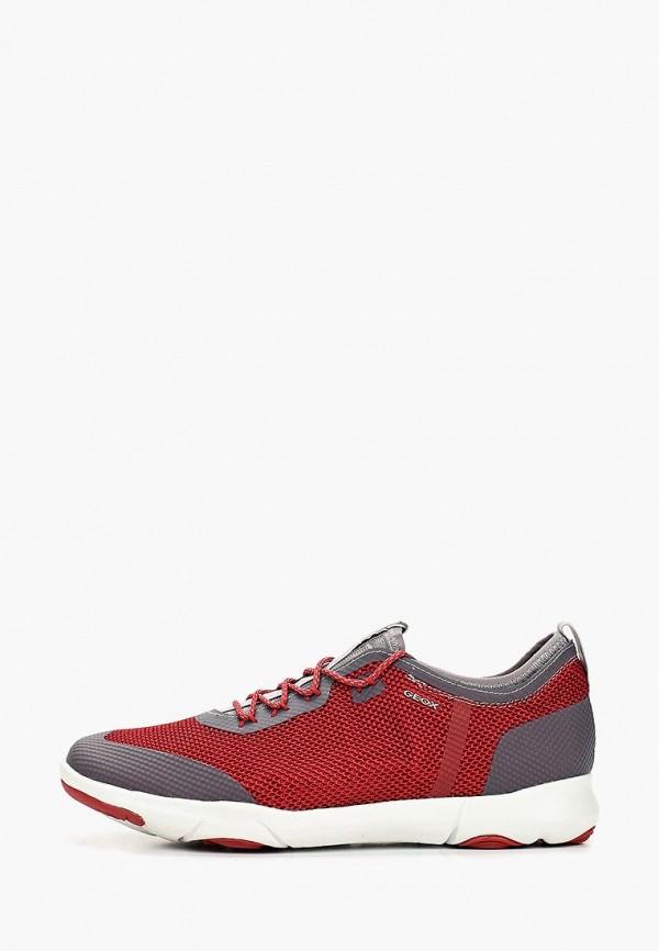 мужские кроссовки geox, бордовые