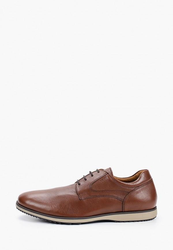 мужские туфли geox, коричневые