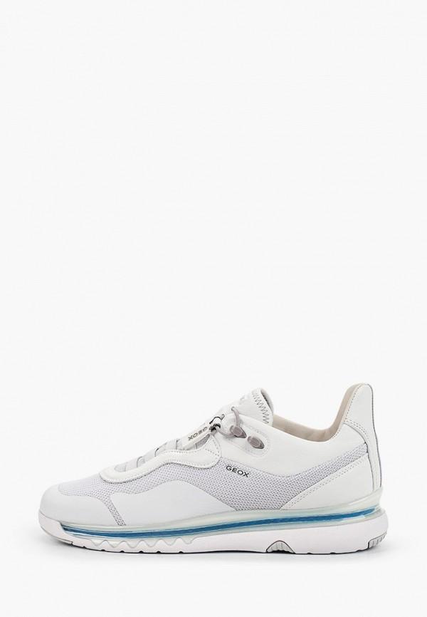 мужские низкие кроссовки geox, белые