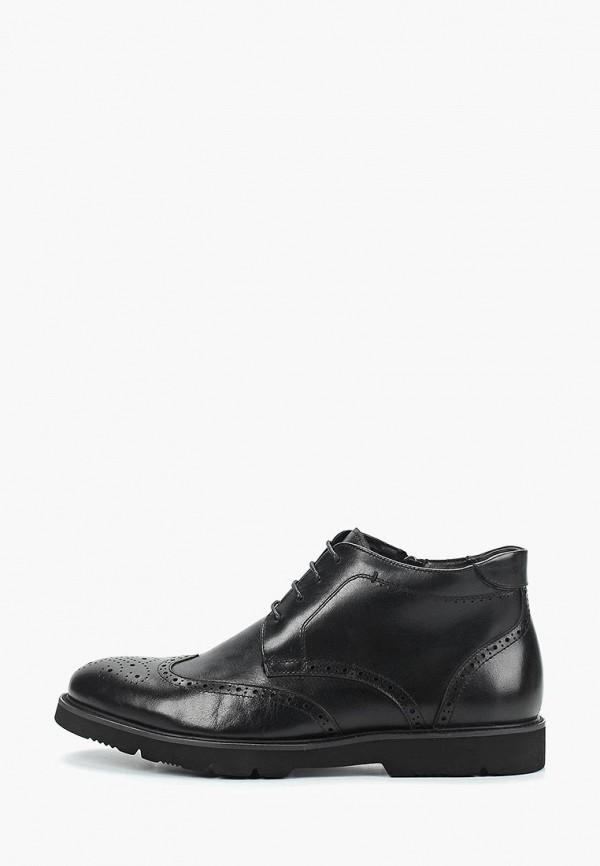 где купить Ботинки Guido Grozzi Guido Grozzi GU014AMCIUM8 по лучшей цене