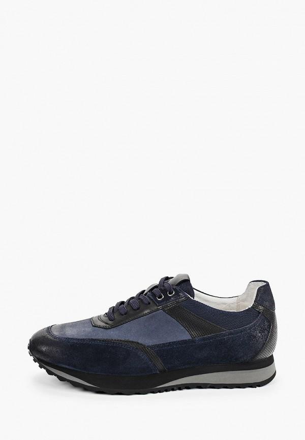 мужские низкие кроссовки guido grozzi, синие