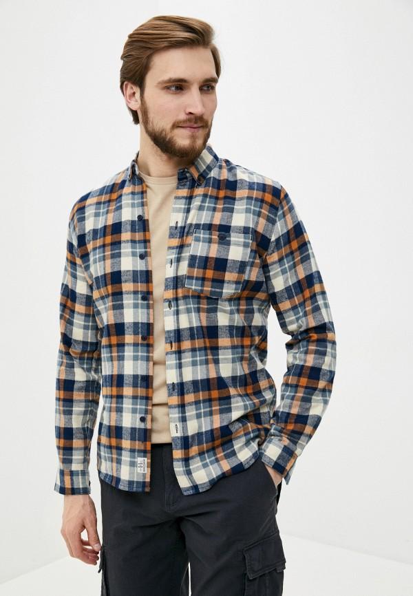 мужская рубашка с длинным рукавом haily's, разноцветная