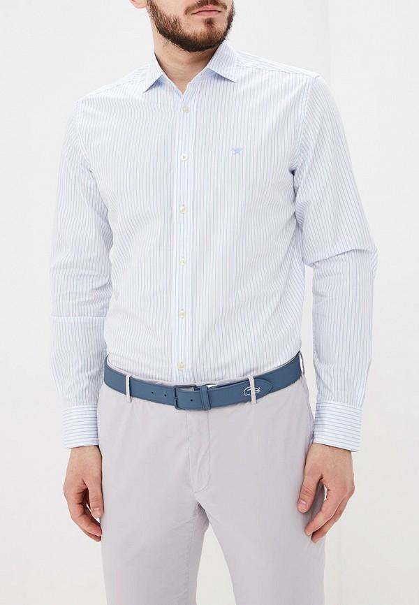Рубашка Hackett London Hackett London HA024EMDVSN5 все цены