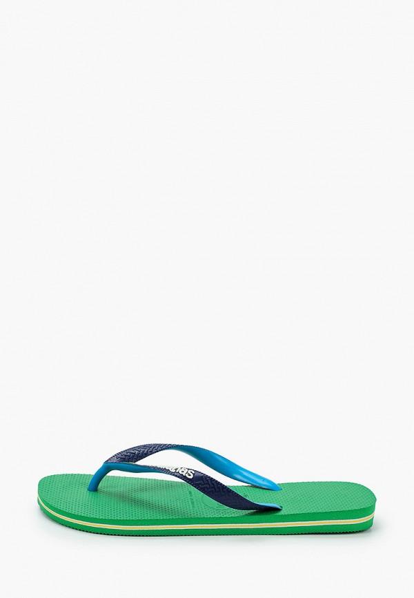 мужские сланцы havaianas, синие