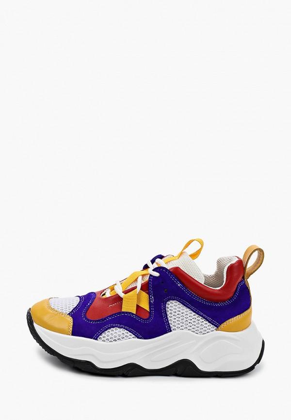 женские кроссовки hcs, разноцветные