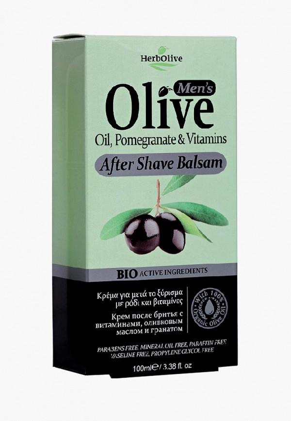 Купить Бальзам после бритья HerbOlive, после бритья 120 мл, he016lmcuvn1, прозрачный, Весна-лето 2019