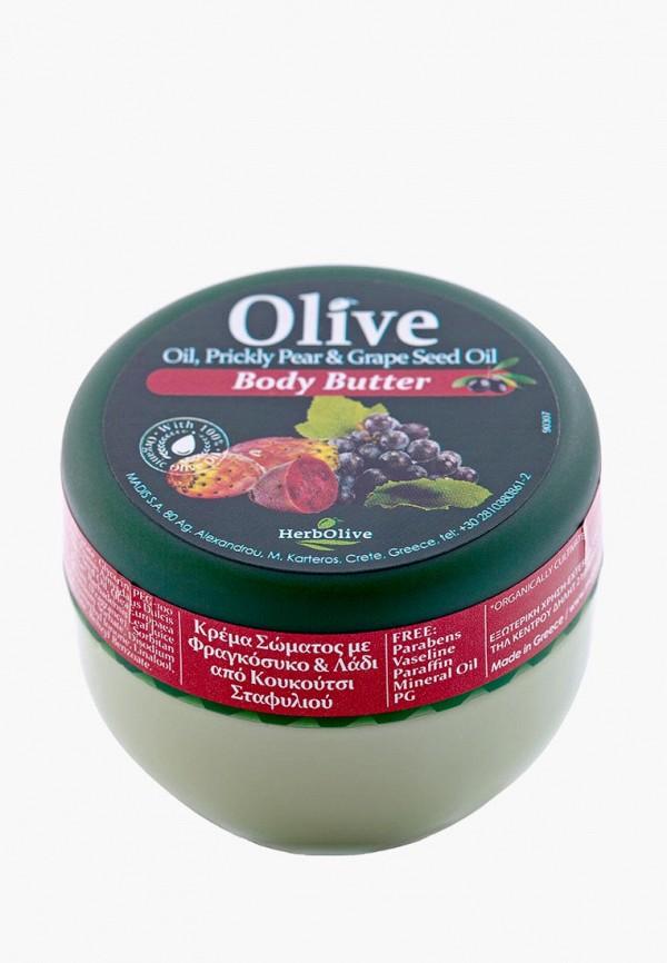 Масло для тела HerbOlive HerbOlive HE016LWCUVM8 масло для тела herbolive herbolive he016lwskn47