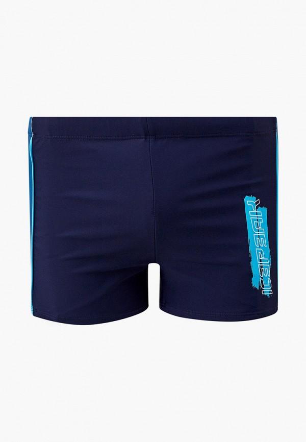 мужские плавки icepeak, синие