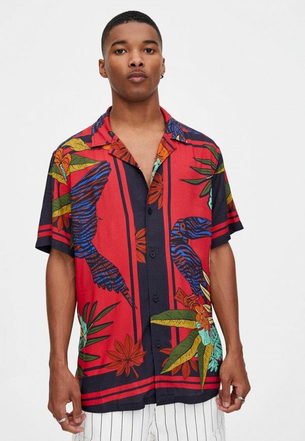 Рубашка Pull&Bear Pull&Bear IX001XM003DU рубашка pull