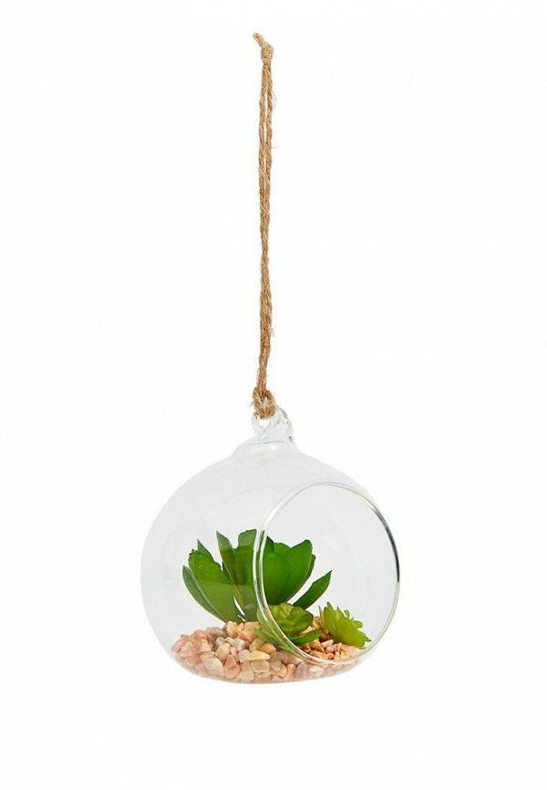 Растение искусственное Stradivarius Stradivarius IX001XU0000S цены