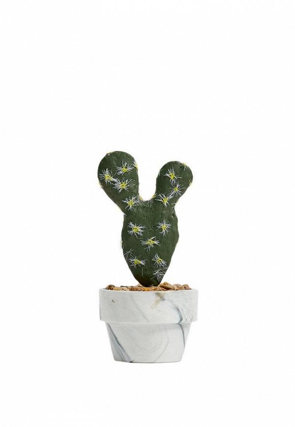 Растение искусственное Stradivarius Stradivarius IX001XU00012 цены