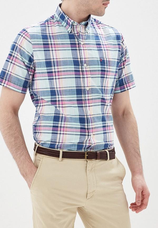 мужская рубашка с коротким рукавом izod, разноцветная