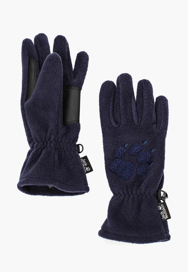 Купить Перчатки Jack Wolfskin, PAW GLOVES, ja021dukhq15, синий, Осень-зима 2018/2019