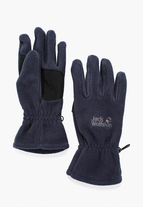 Купить Перчатки Jack Wolfskin, ARTIST GLOVE, ja021duwha70, синий, Осень-зима 2018/2019