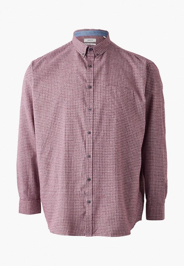 мужская рубашка jack's sportswear intl, розовая