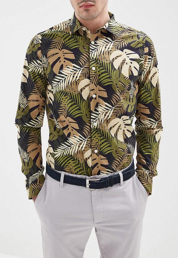 Рубашка Jimmy Sanders Jimmy Sanders JI006EMFESB8 цена