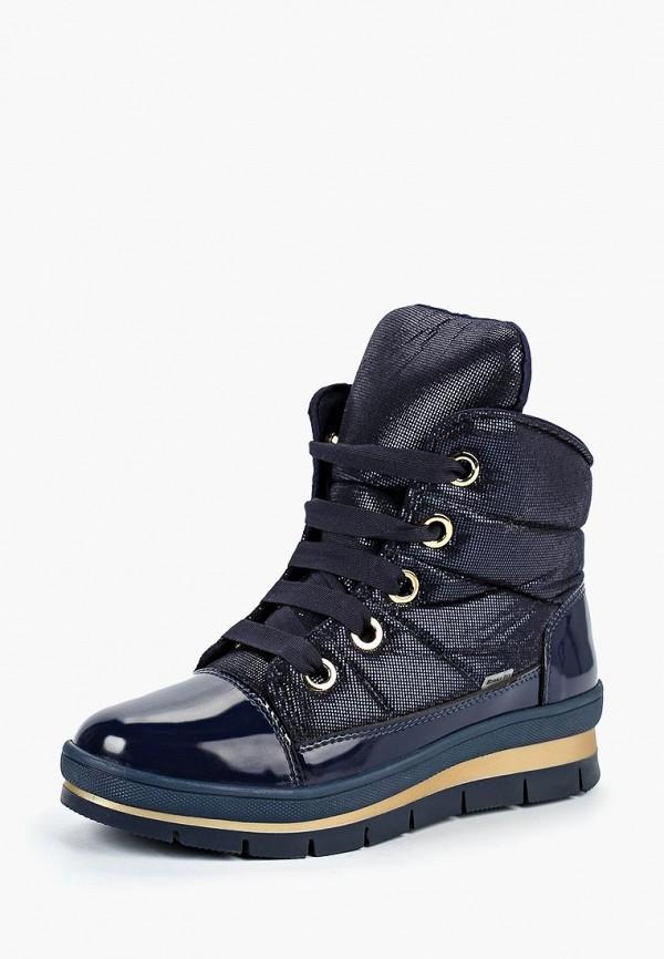 Ботинки Jog Dog Jog Dog JO019AGCEJS6 ботинки jog dog jog dog jo019awvro76