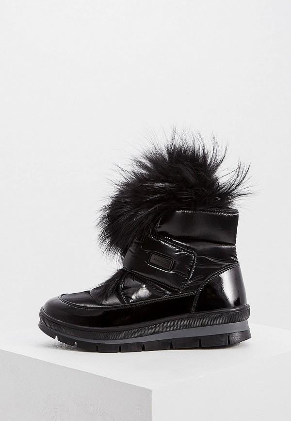 женские ботинки jog dog, черные